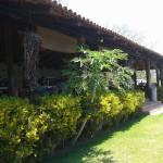 Rancho grande los pinos (4)