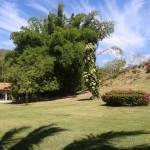 Rancho grande los pinos (6)